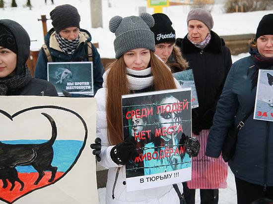 Центральный аппаратСК займется изучением дела хабаровских живодерок