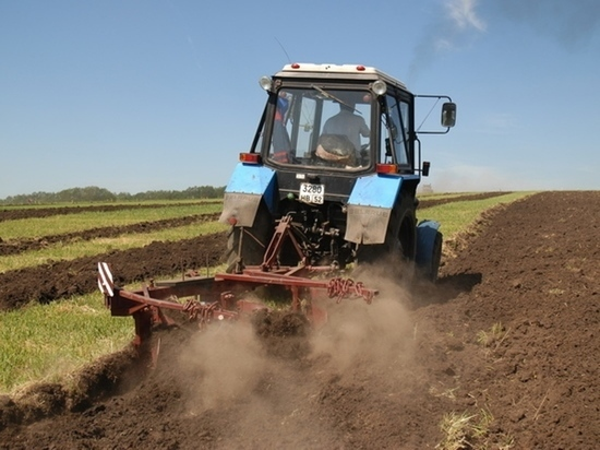 В карельском парламенте решали, как помочь сельхозпроизводителям
