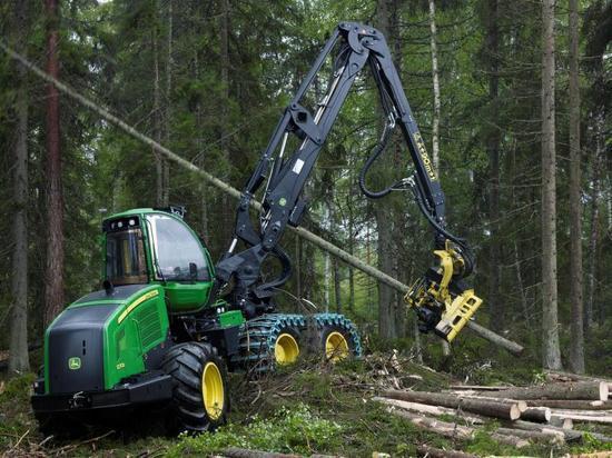 Как правильно рубить карельский лес, и почему так не делается