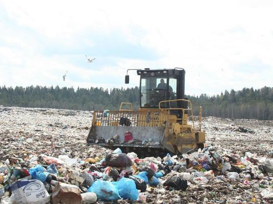 Кадры: стало известно, кто будет начинать мусорную реформу в республике